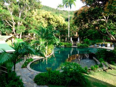 Saint Martin - Sint Maarten - SXM de jour